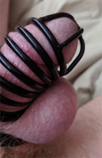 Cock Cage full smaller