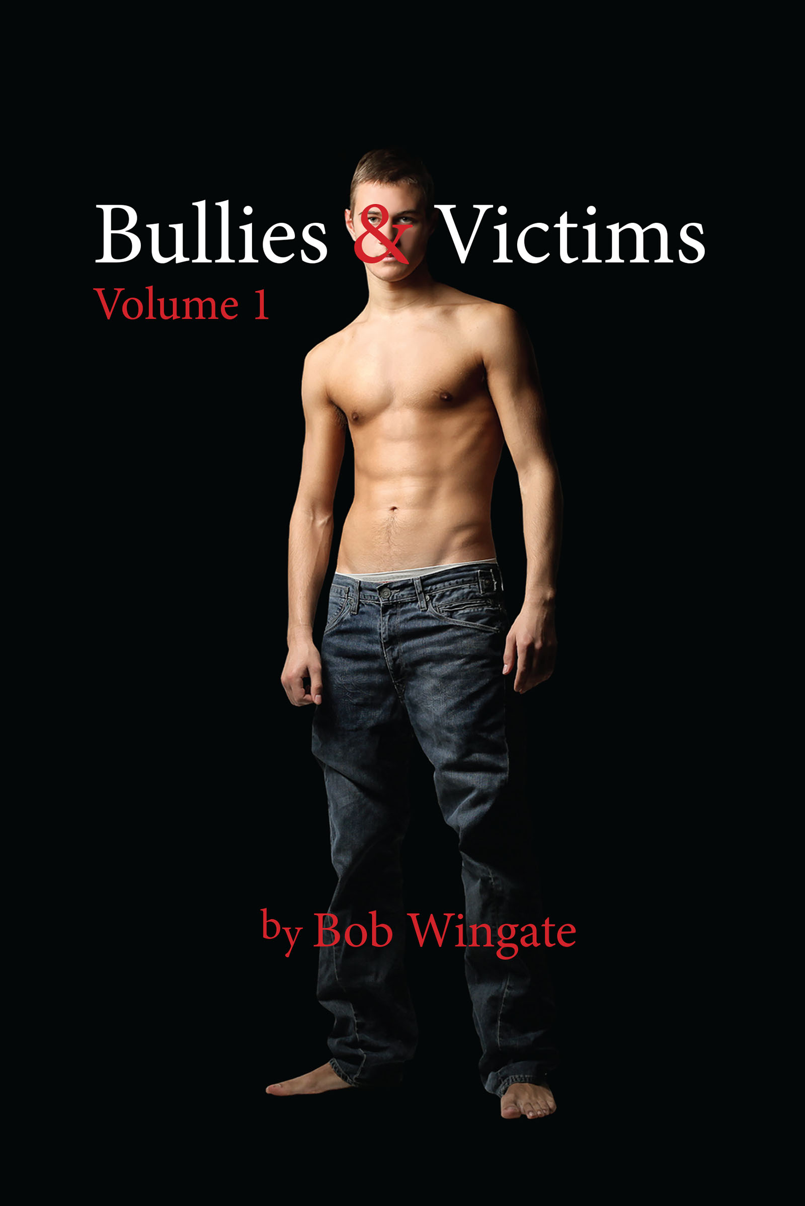 Bullies & Victims, Volume 1 (eBook)