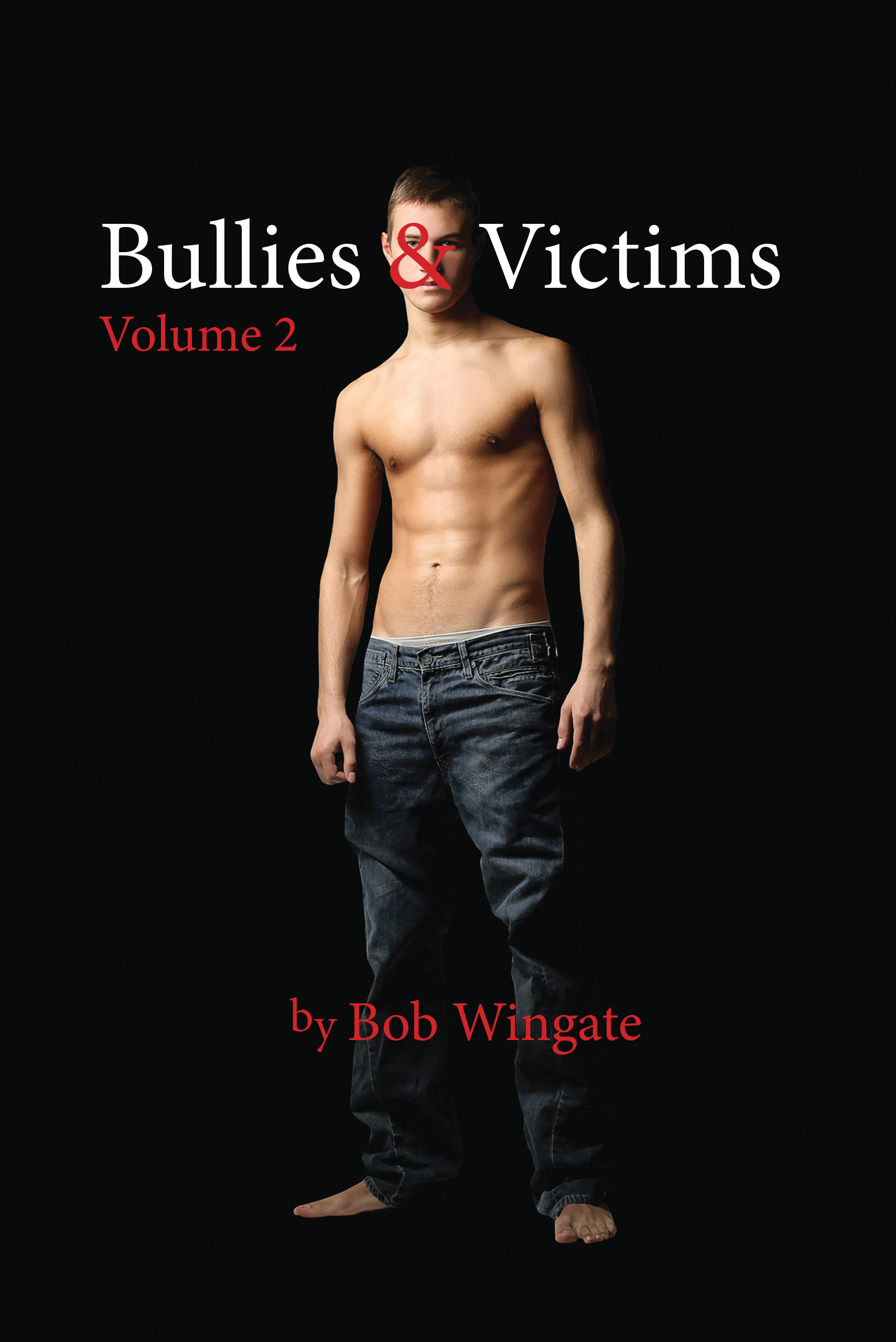 Bullies & Victims, Volume 2 (eBook)